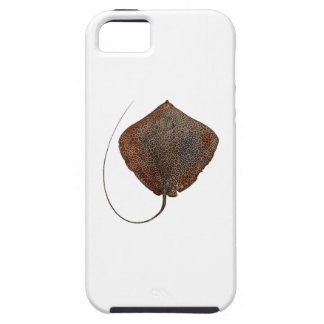 RAY OF LIFE iPhone 5 CASE