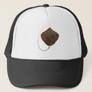 RAY OF LIFE TRUCKER HAT