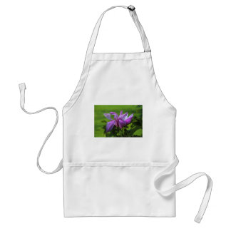 Ray of Peace.JPG Standard Apron