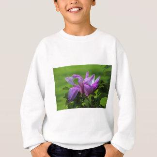 Ray of Peace.JPG Sweatshirt