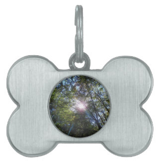 Ray of sun pet name tag