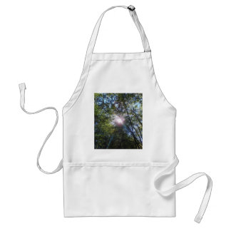 Ray of sun standard apron