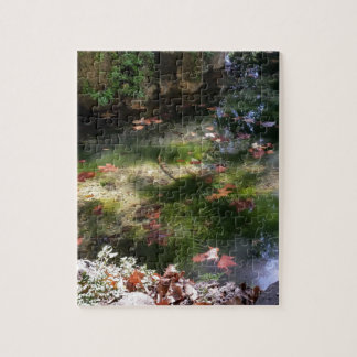 rays and leaves on water jigsaw puzzle
