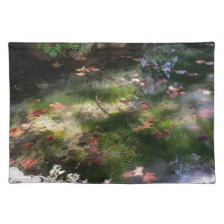rays and leaves on water placemat