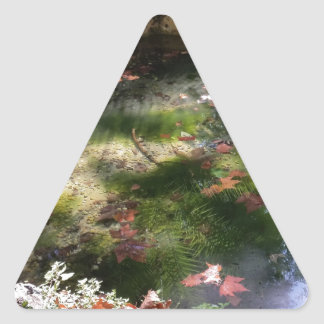 rays and leaves on water triangle sticker
