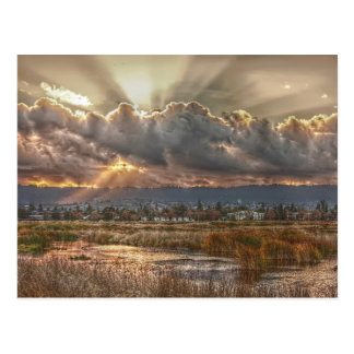 Rays at sunset Postcard