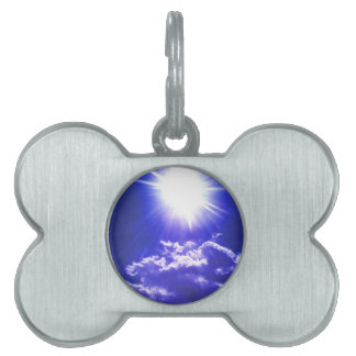 RAYS OF SUNSHINE PET TAG