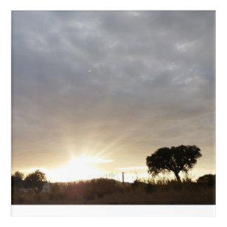 Rays of the Sun Acrylic Print
