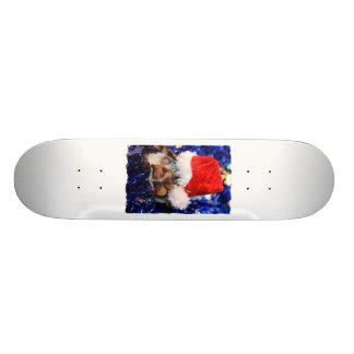 Razorbacked Musk Turtle Santa Hat over head Skateboard Deck