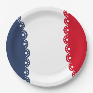 Razzle Dazzle July 4th Party Paper Plates 9 Inch Paper Plate