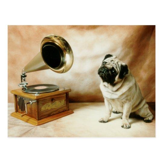 RCA Pug Dog Postcard