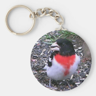 Re Breasted Gross Beak Basic Round Button Keychain