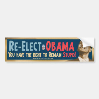 Re-Elect Obama, Stupid! Bumper Sticker
