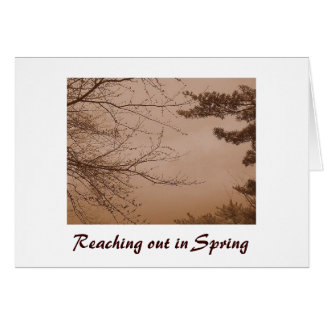 Reaching Out in Spring/Love Card