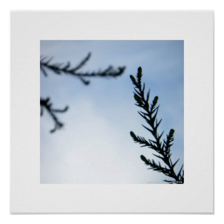 Reaching Out To You/Inspirational Nature Print