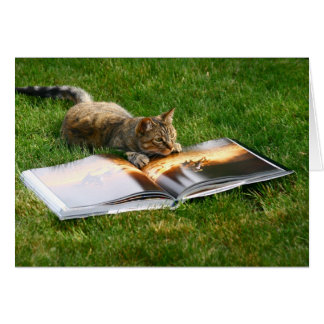 Reading Cat Card