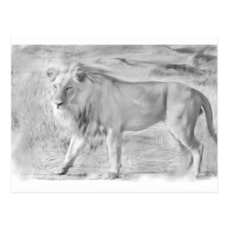 Ready to Color Grey-scale Lion Postcard