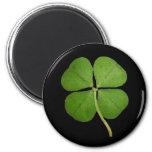 Real 4 Leaf Clover Shamrock Black 2 Inch Round Magnet