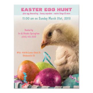 Real Chick in Egg Basket Easter Egg Hunt Party Card