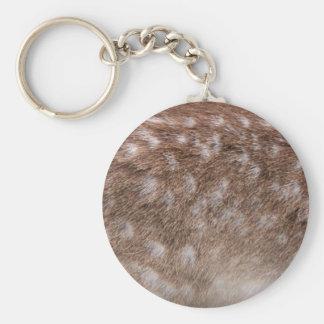 Real Deer Fur Photo Sampling Wildlife Gift Keychain