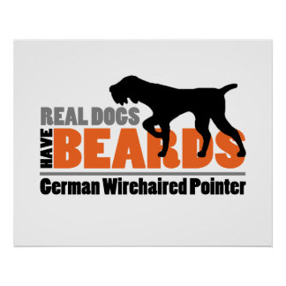 Real Dogs Have Beards - German Wirehaired Pointer Poster