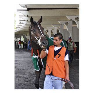 """Real Estate"" ridden by Alex Solis Postcard"