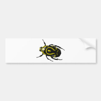 Realistic Hornless Yellow and Black Beetle Insect Bumper Stickers