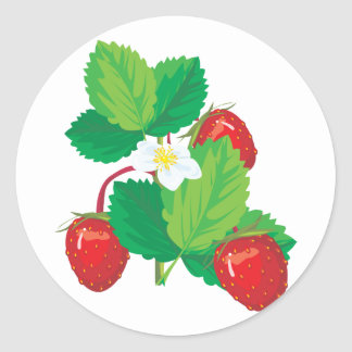 realistic juicy strawberries classic round sticker