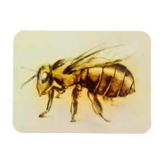 Realistic Yellow Hornet art, Photo Magnet - Bee