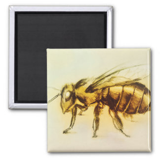 Realistic Yellow Hornet art, Square Magnet - Bee
