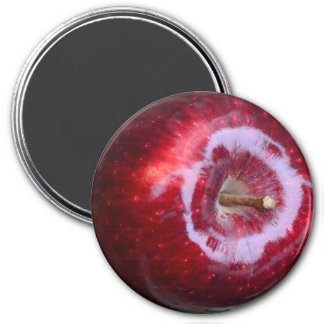 Realistic Yummy Red Apple Refrigerator Magnet