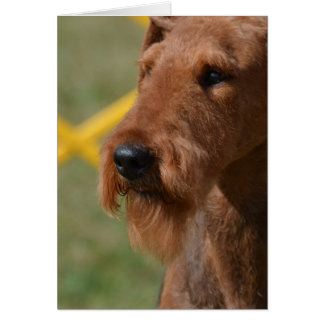 Really Cute Airedale Terrier Card