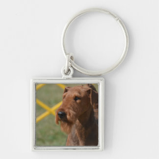 Really Cute Airedale Terrier Silver-Colored Square Keychain