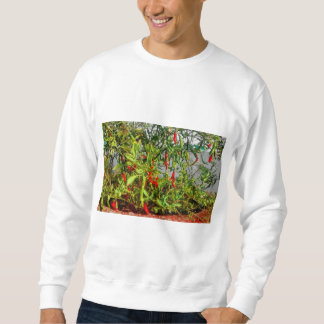 Really hot sweatshirt
