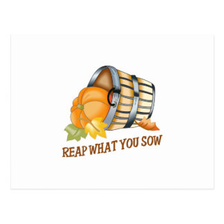 REAP WHAT YOU SOW POSTCARD