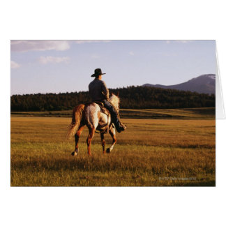 Rear view of cowboy riding horse card