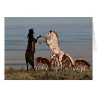 Rearing Stallions Greeting Card