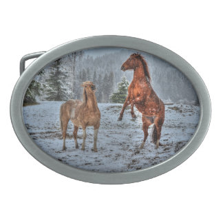 Rearing Winter Horse and Stallion in Snowy Field 2 Oval Belt Buckles