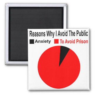 Reasons Why I Avoid The Public To Avoid Prison Magnet