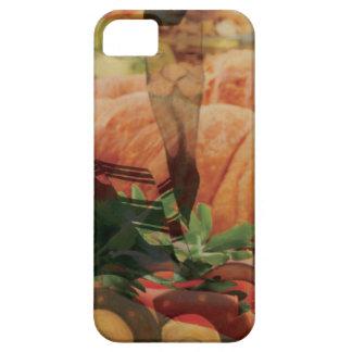Rebbe Davenen iPhone 5 Covers