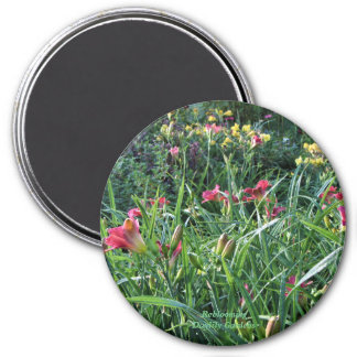 Reblooming Daylily Garden Magnet