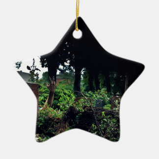 Recently on the cemetery ceramic star ornament