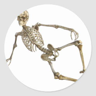 Reclining Skeleton Classic Round Sticker