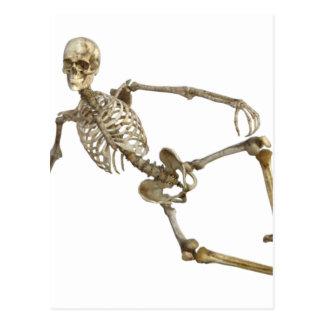 Reclining Skeleton Postcard