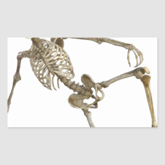 Reclining Skeleton Sticker