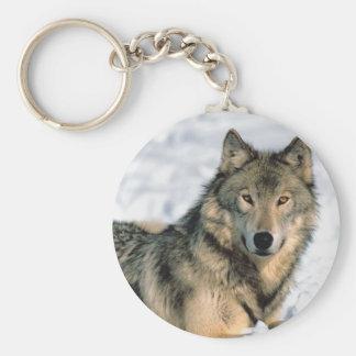Reclining Wolf Basic Round Button Keychain