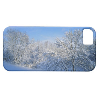 Record snow in Louisville, Kentucky. Case For The iPhone 5