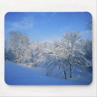 Record snow in Louisville, Kentucky. Mouse Pad