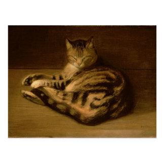 Recumbent Cat, 1898 Postcard