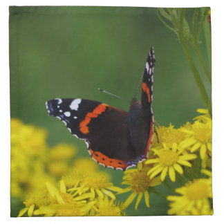 Red Admiral Butterfly Cloth Napkins